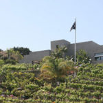 newport-beach-winery-5